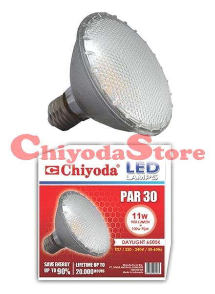 LED PAR 30 E27 Photo
