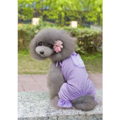 Pet Pyjama - Purple / Pink Lacey Photo