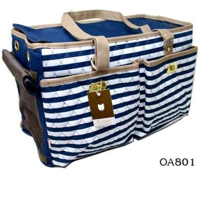 Pet Carrier - Blue Stripes Photo
