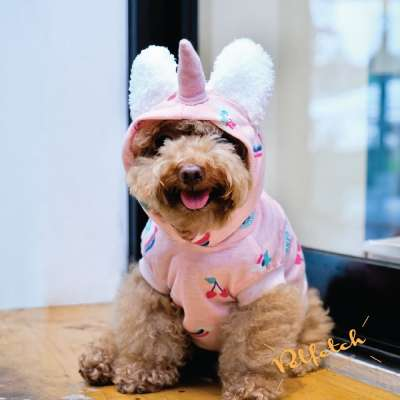 Pet Hoodie - Unicorn Photo