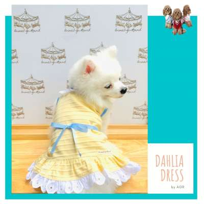 Animal Go Round - Dahlia dress Photo