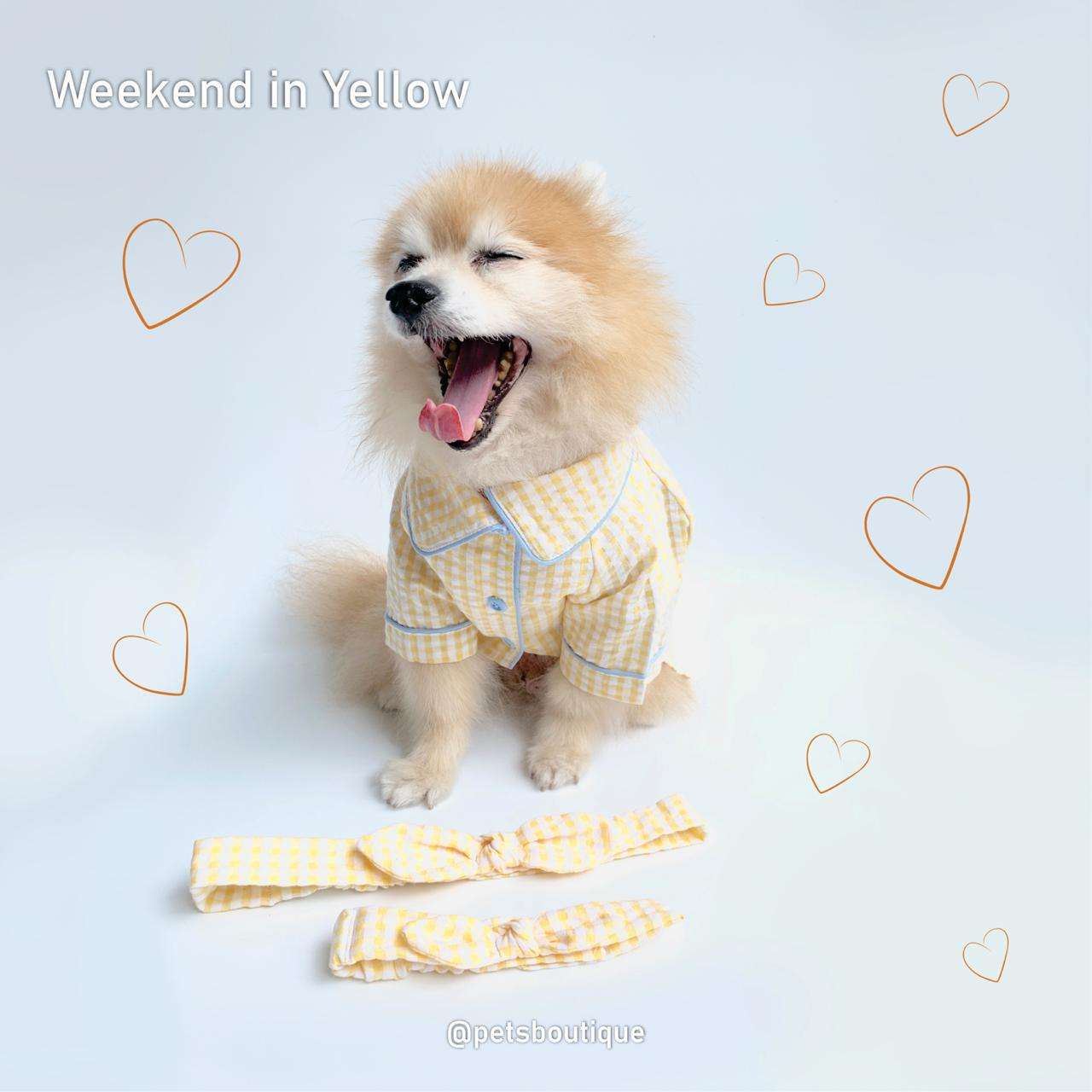 Animal Go Round - Weekend Couple Set Yellow Photo