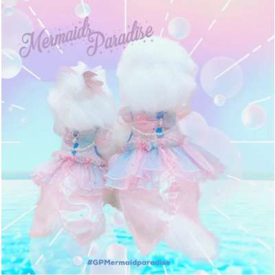 Glitter Pooch - MERMAID PARADISE DOG & CAT HARNESS DRESS Photo