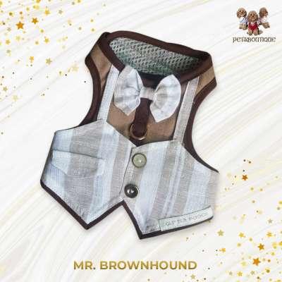 Glitter Pooch - Mr Brown Hound Photo