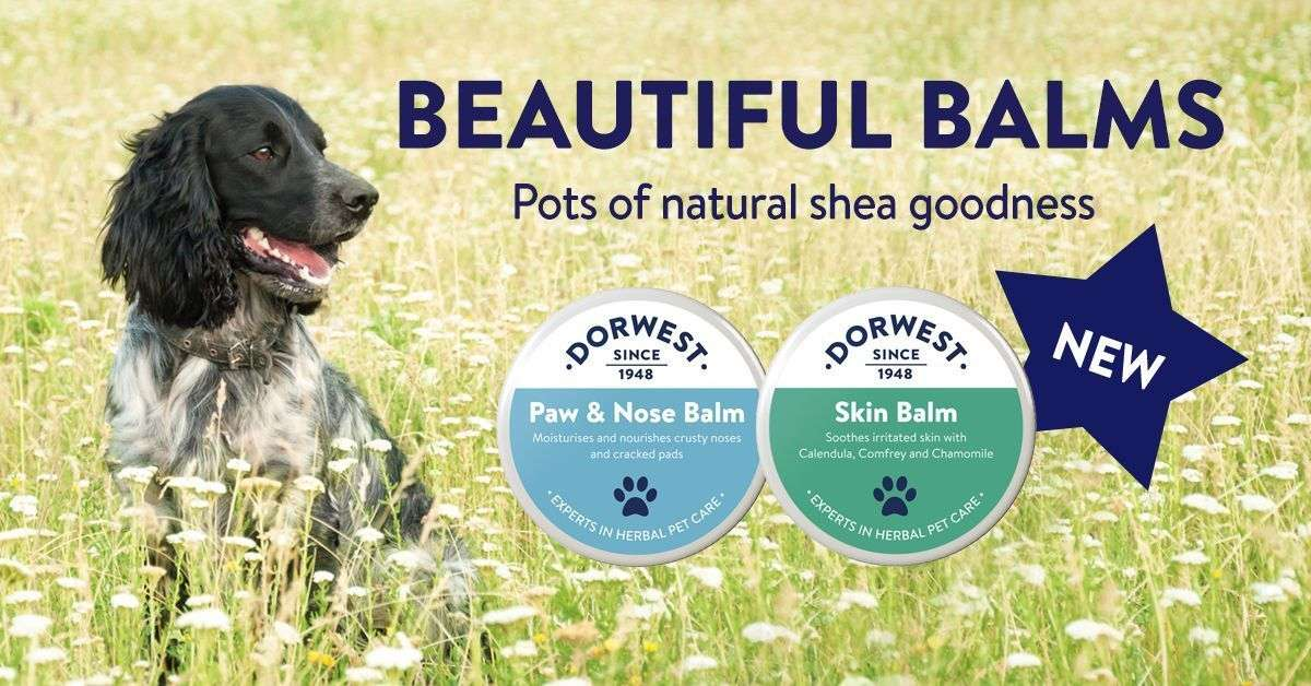 Dorwest - Duo Power - Skin Balm + Paw & Nose Balm Photo