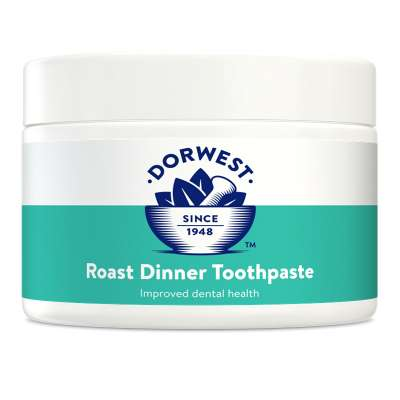 DORWEST -  Roast Dinner Toothpaste Photo