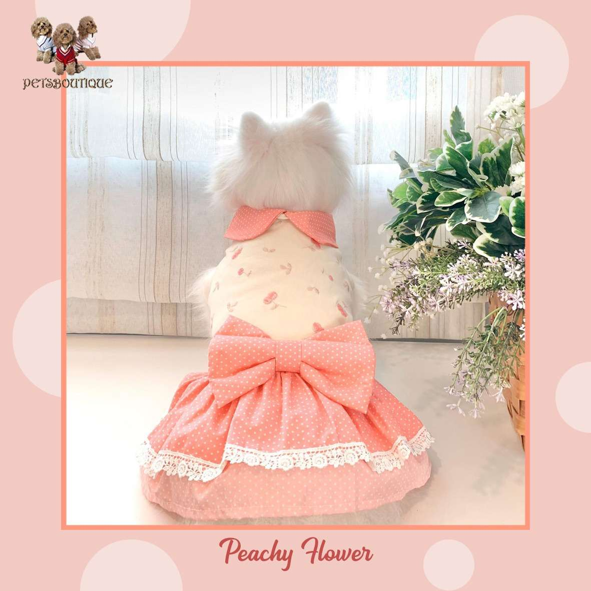 Animal Go Round - Peachy Flower Photo