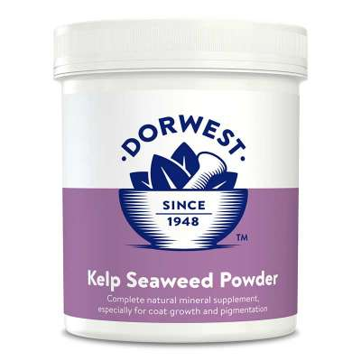 DORWEST -  Kelp Seaweed Powder For Dogs And Cats Photo