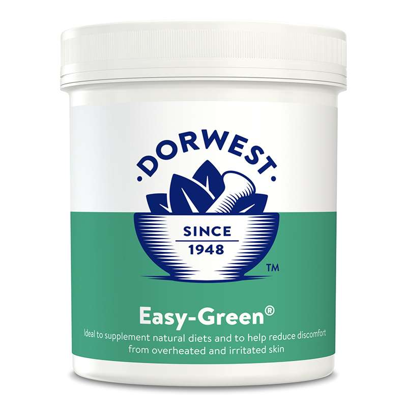 DORWEST -  Easy Green Powder For Dogs And Cats Photo