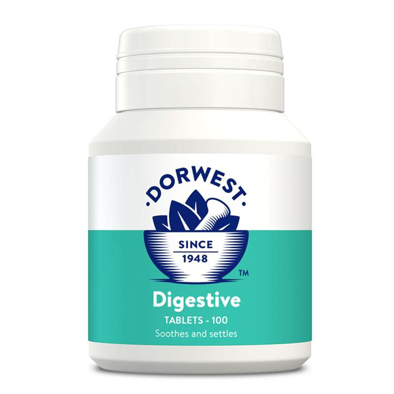 DORWEST - Digestive Tablets For Dogs And Cats Photo