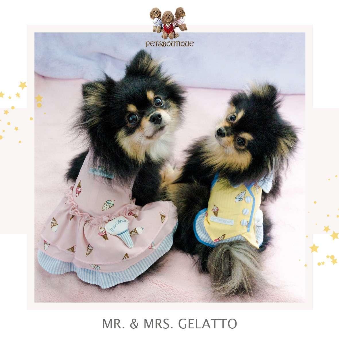 Glitter Pooch - Mr & Mrs Gelato - Dog & Cat Harness dress Photo