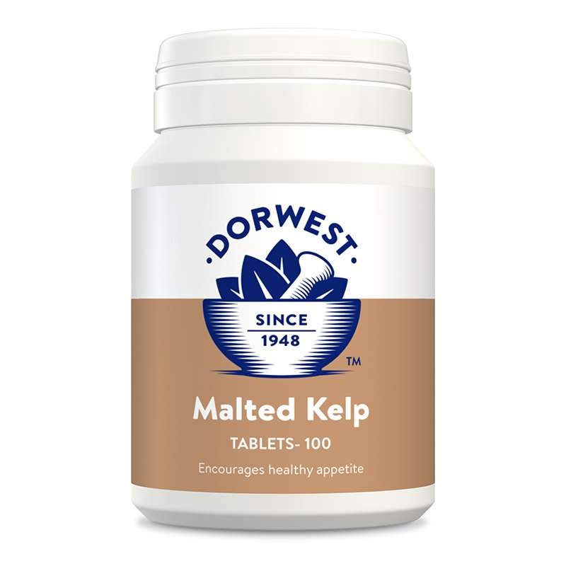 DORWEST -   Malted Kelp Tablets For Dogs And Cats Photo