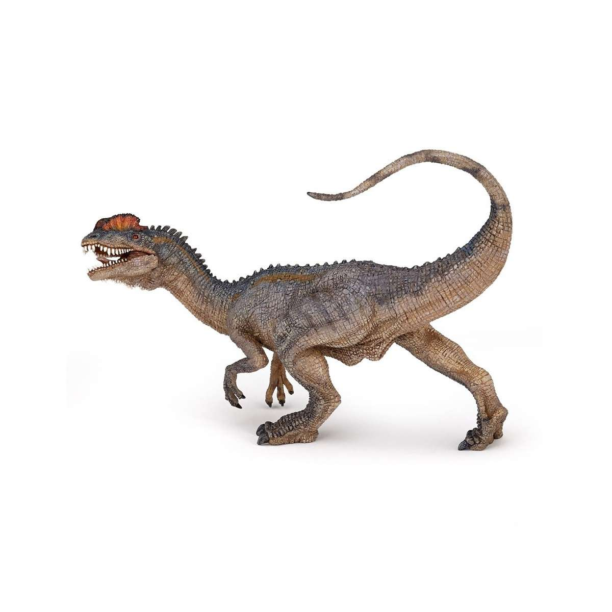 Animal Figure: Dinosaur - Dilophosaurus, 55035 Photo