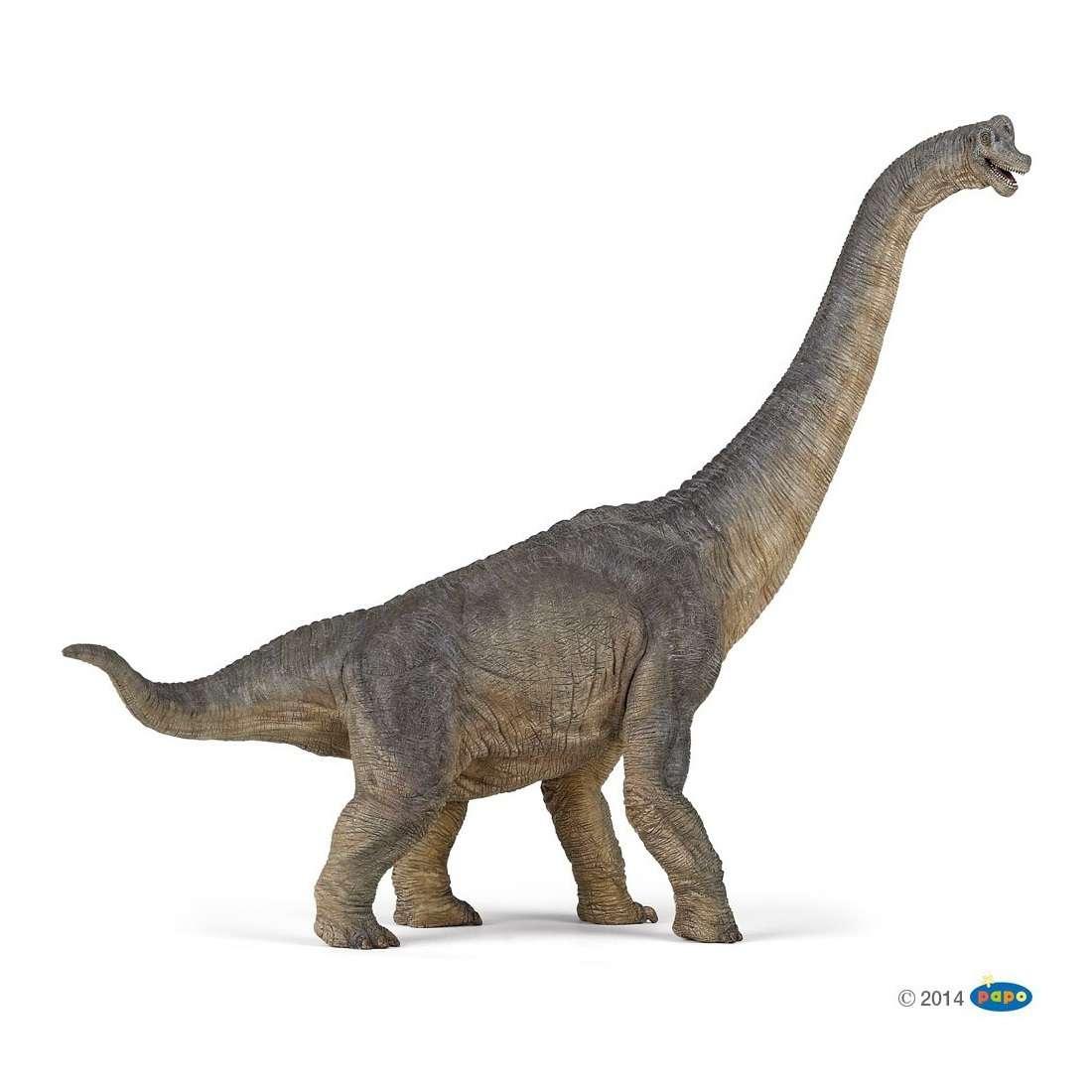 Animal Figure: Dinosaur - Brachiosaurus, 55030 Photo